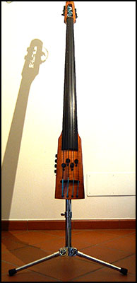 NS Electric Contrabass_bg